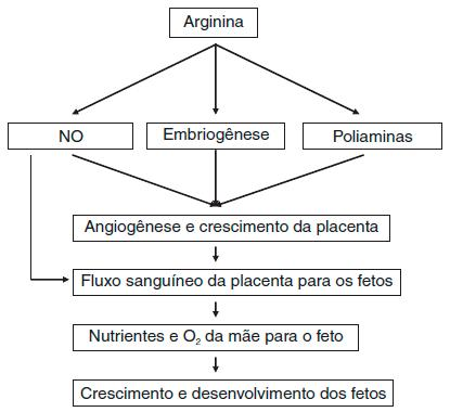 Fig 02